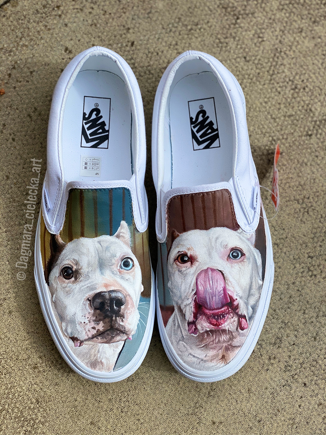 Hand Painted Vans of Daphne